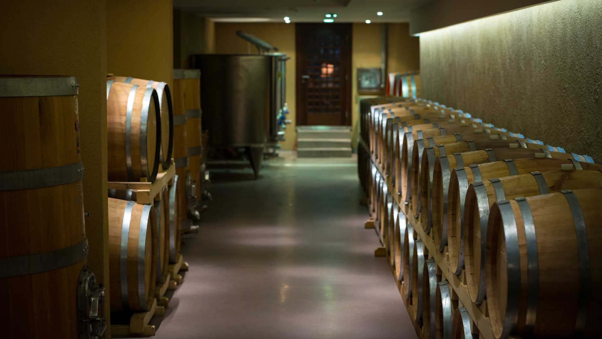 vinarija atelje vina sapat hrast bure